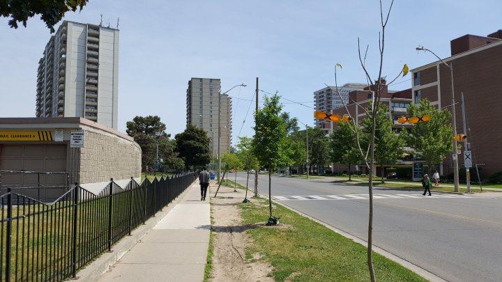 walk1.jpg