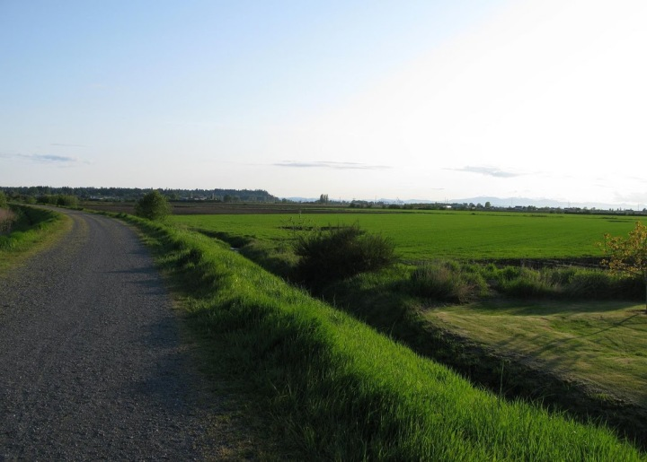Boundary Bay Path_3532915730_l